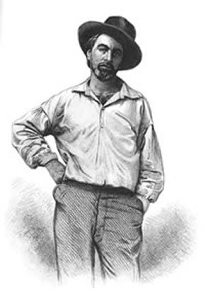 Black and white drawing of Walt Whitman